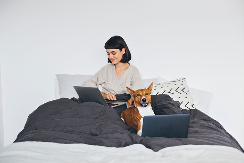 Working from home: top 10 tips to keep you productive
